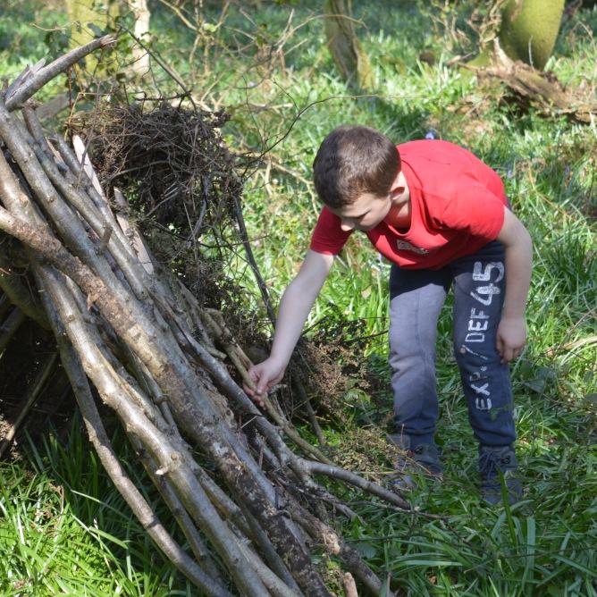 Survival shelter construction